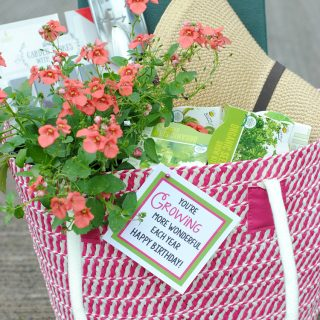 Fun Gardening Gift Basket Idea