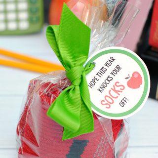 Back to School Socks Gift Idea
