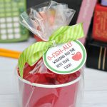 Apple for the Teacher Gift Idea
