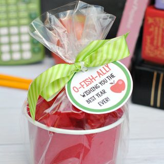 Apple for the Teacher Gift Idea