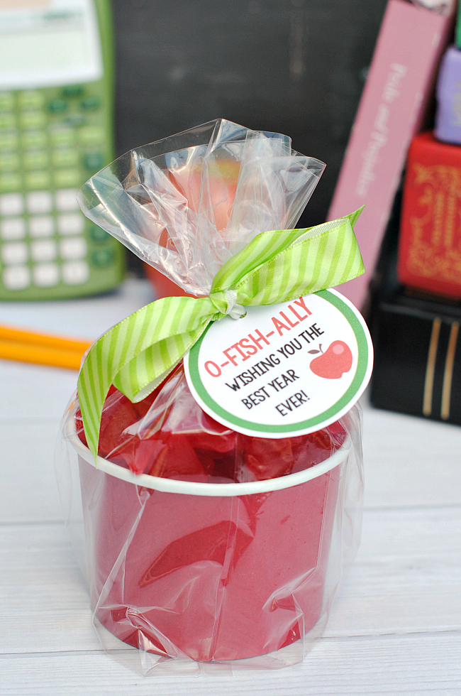 Cute Apple Teacher Gift Idea