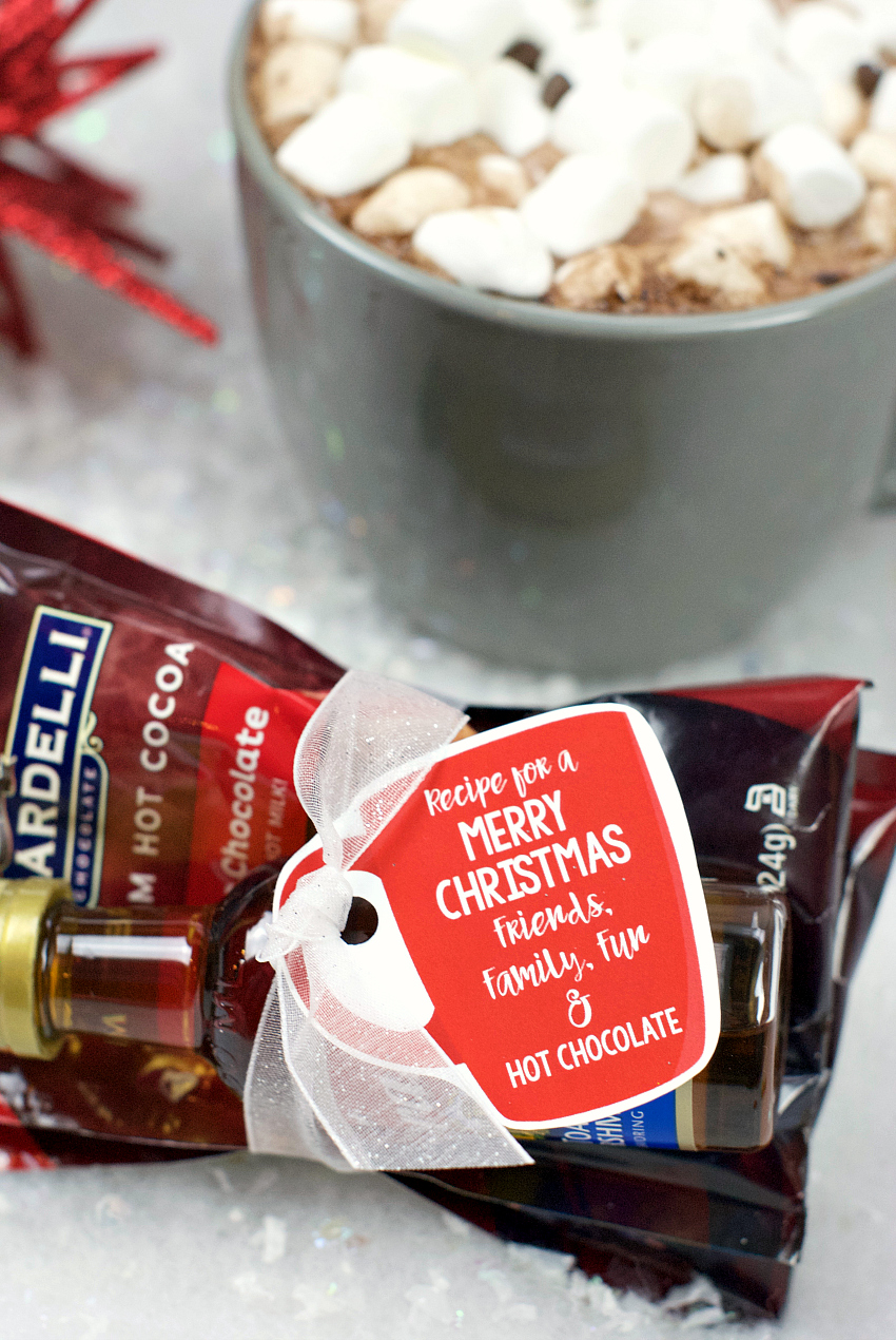 Hot Chocolate Gift Idea for Christmas