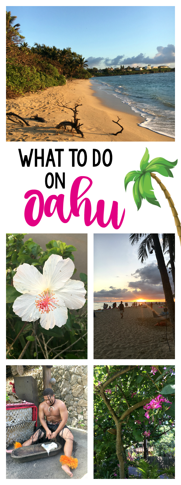 Fun Things to do on Oahu