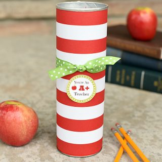 Cute Teacher Appreciation Gift in a Pringles Can