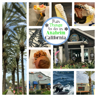 Fun Things to do in Anaheim (Other Than Disneyland)