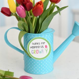 Flowers for Teacher Gift Idea
